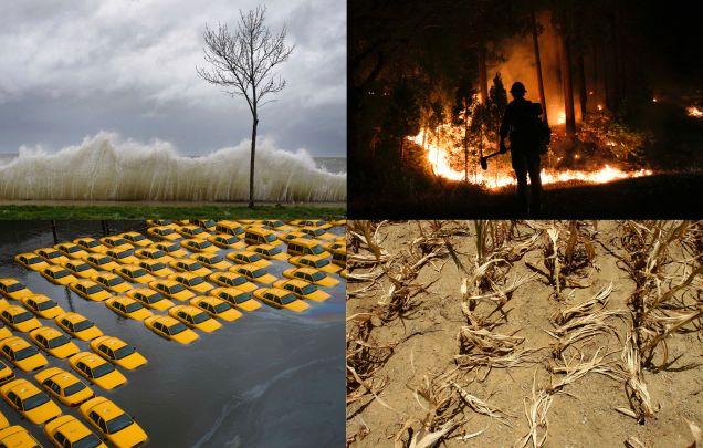 Efectos de la sequía en California. Foto: CalFire.