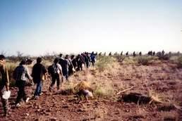 """Inmigrantes indocumentados en su intento por cruzar la frontera sur  hacia """"el sueño Americano"""". Foto: www.moonbattery.com"""