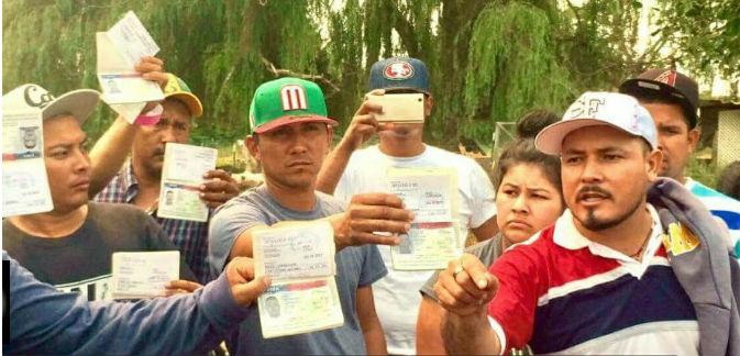 Trabajadores agrícolas con visa H 2A reclamando sus derechos
