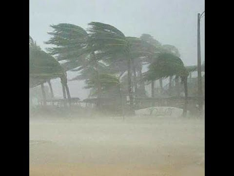 Live Video Footage of Hurricane Maria in Guadeloupe - Hurricane ... YouTube