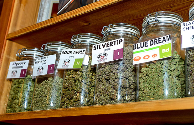 Dispensario en el estado de Montana, que aprobó la marihuana medicinal hace más de una década. Foto: cannabisnow.com