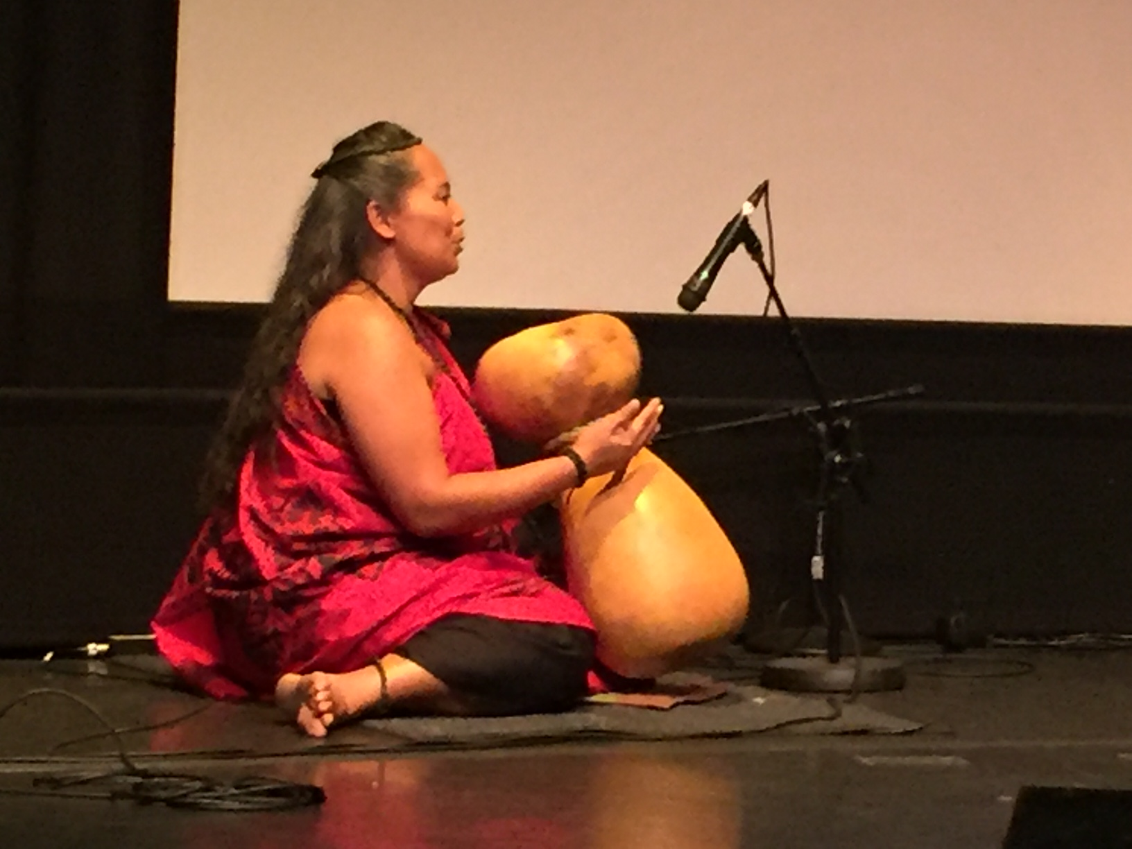 The group Hālau Nāpuaokamokihanaha works to promote hula dancing and music in San Jose.