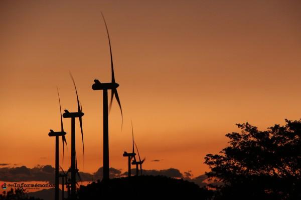Proyecto eólico encabezado por las empresas españolas Unión Fenosa Gas Natural, Endesa e Iberdrola en el Istmo de Tehuantepec. Foto: www.desinformemonos.org.