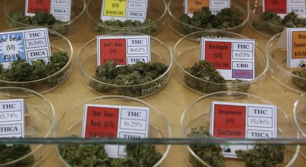 Dispensario de mariguana regulada y clasificada. Foto: www.thelaughinggrass.com