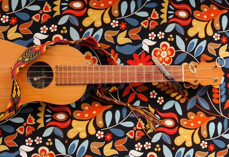 sonando-sur-sonando-norte-son-jarocho-festival-san-francisco-2