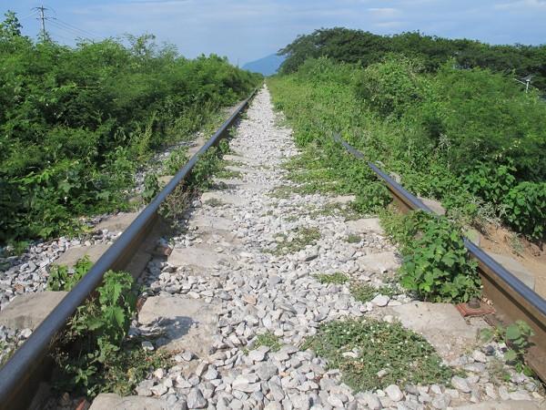 Vías del tren en Ixtepec, Oaxaca. Marvin Villalobos viajó por ferrocarril con sus tres hermanos en 2017 para realizar su sueño de encontrar trabajo en los Estados Unidos. Pero para Villalobos, el viaje terminó siendo fatal.