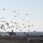 Los habitantes de Santa María del Mar tradicionalmente han sobrevivido de la pesca.