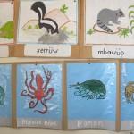 Fotos de animales locales en la pared de una escuela bilingüe en la ciudad de San Mateo del Mar.
