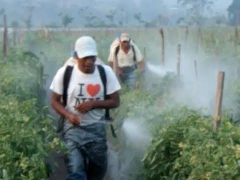 Foto: www.globalhealth.duke.edu.