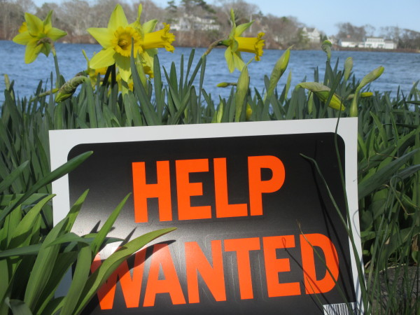 Hiring Season on Cape Cod - Cape Cod Wave Cape Cod Wave
