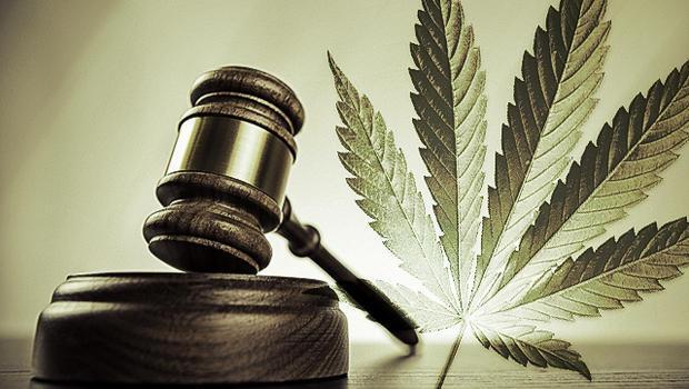 Going Green: un análisis de la enmienda 64 de Colorado. Foto: Harvard Journal on Legislation.