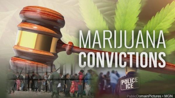 Inmigrantes convictos con crímenes de mariguana pueden ser deportados dictamina Corte federal de Apelaciones del 9vo Circuito en San Francisco. Foto: KRCR.