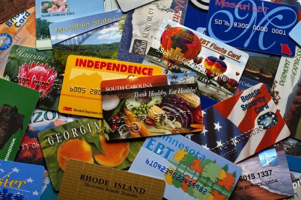 Distintas presentaciones en los diferentes estados de la nación, proporcionados por el Programa de Asistencia de Nutrición Suplementaria del Servicio de Alimentos y Nutrición (FNS) del USDA. Foto: snaped.fns.usda.gov.