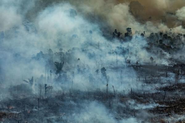 Una imagen aérea del Amazonas ardiendo en el área de Protección Ambiental de Jamanxim, en la ciudad de Novo Progresso, estado de Pará, Brasil. Foto: www.express.co.uk.