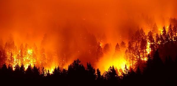 Imágenes satelitales muestran uno de los miles de los devastadores incendio en la selva amazónica. Foto: www.geospatialworld.net. Imágenes satelitales muestran uno de los miles de los devastadores incendio en la selva amazónica. Foto: www.geospatialworld.net.