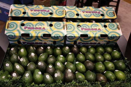 Avocados de Michoacán cada vez son más consumidos en restaurants y hogares de Estados Unidos. Foto: www.freshplaza.com.