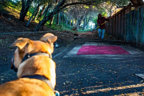 Ciha limpia alrededor de la franja de tierra pública donde ha acampado los últimos 14 meses (Anna Maria Barry-Jester / California Healthline.