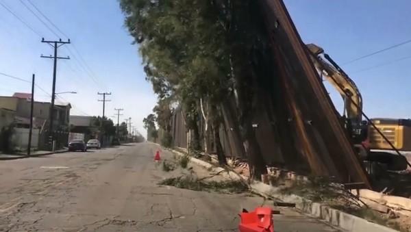 Los paneles recién instalados del muro fronterizo de Estados Unidos que cayeron con los fuertes vientos y aterrizaron en árboles del lado mexicano de la frontera. Foto: www.ktla.com.