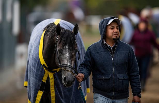 Entrenador/cuidador de caballos de carreras. Foto: Eclipse Sportwire.