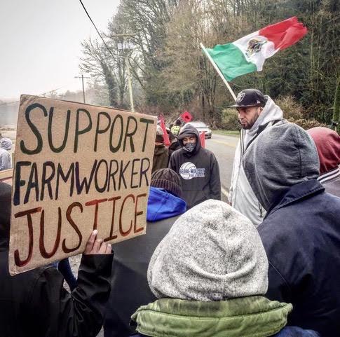 Campesinos en lucha por sus derechos laborales en el valle del Río Skagit, estado de Washington. Foto: Familias Unidas por la Justicia.