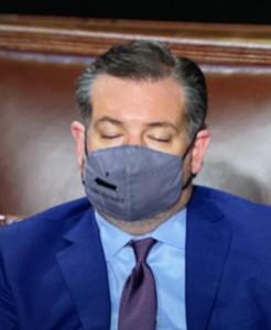 Durante el discurso del presidente en el pleno del Senado, el representante de Texas, Ted Cruz dormitaba de vez en cuando.